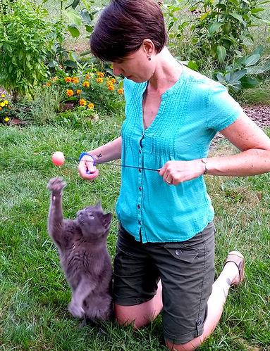 Heather Alvey, Animal Behavior Istitute, cat trainer
