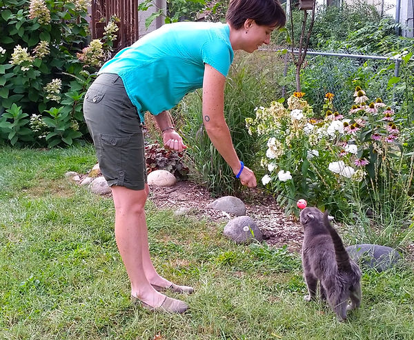 Heather is a professional cat trainer and cat behavior expert.