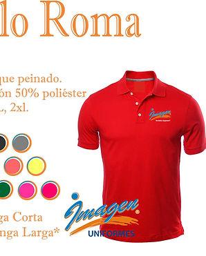 POLO ROMA.jpg