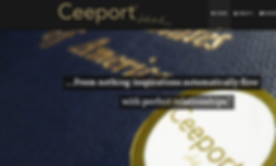 Ceeport screen shot.png