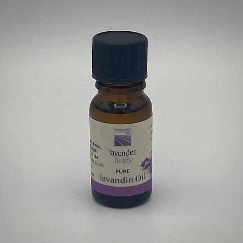Essential Lavandin Oil