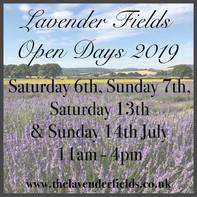 Lavender Open Days 2019