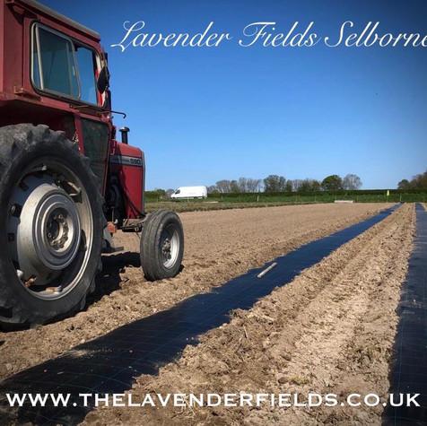 Field Prep April 2020.jpg