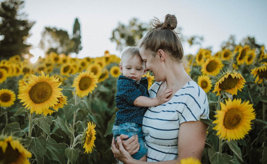 sunflowers Le Marche (16).jpg