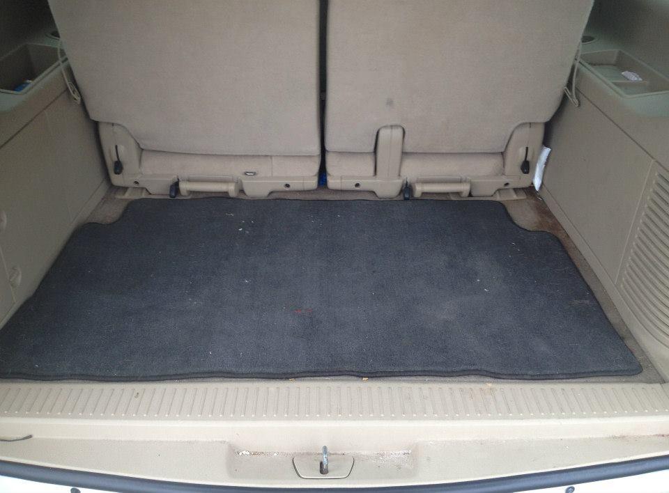 Carpet Shampoo Before