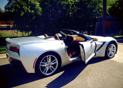 Corvette Stingrey