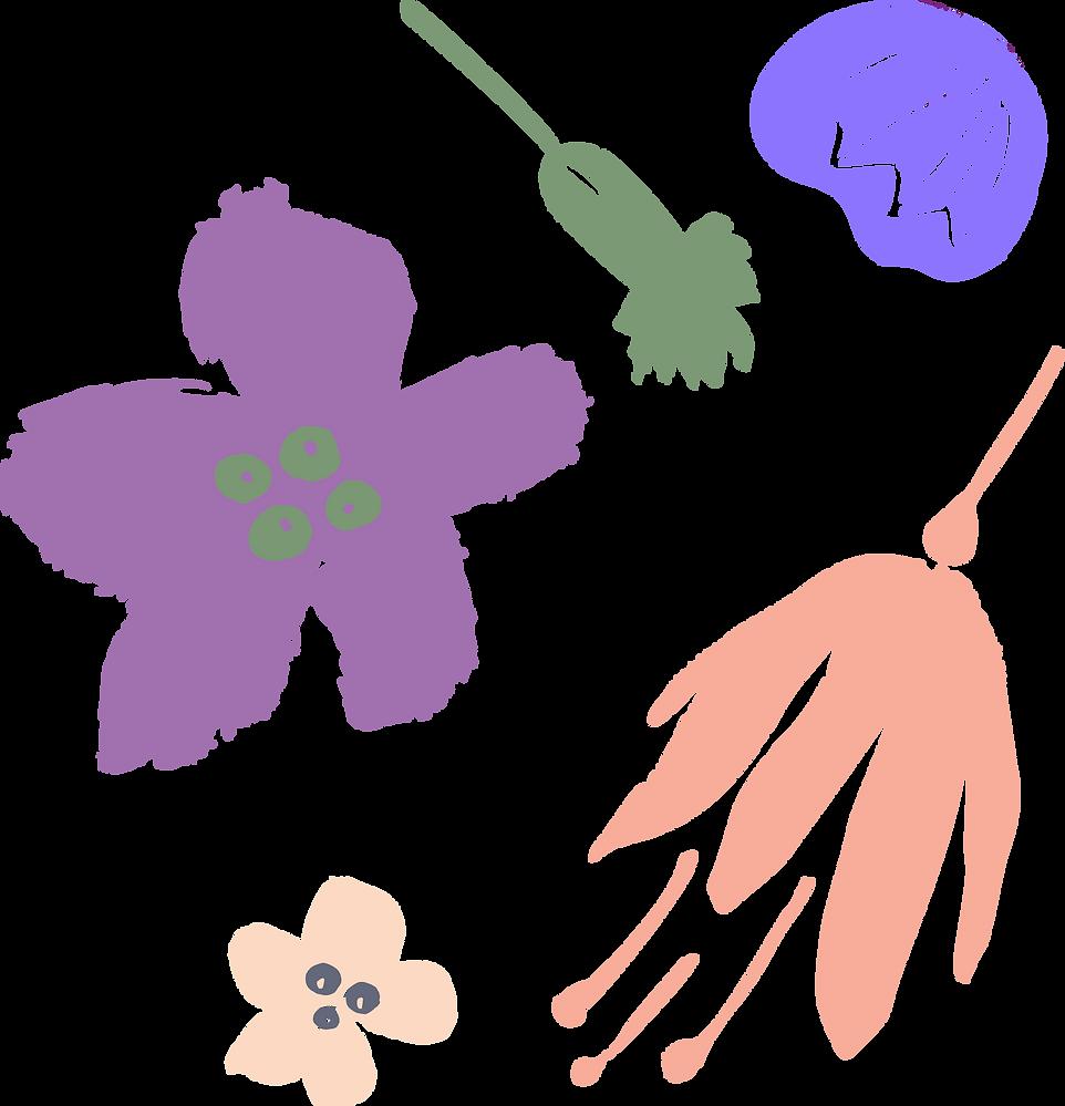 LIT_ART_CURRICULUM_FLOWERS2.png