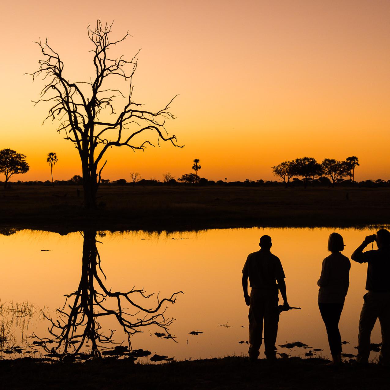 Likwasha reflections
