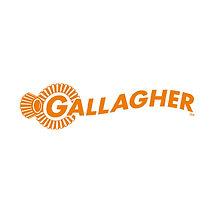 NLS-_0010_Gallagher.jpg