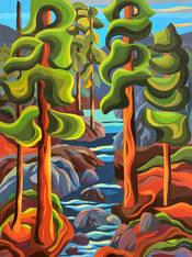 Lynn Canyon View