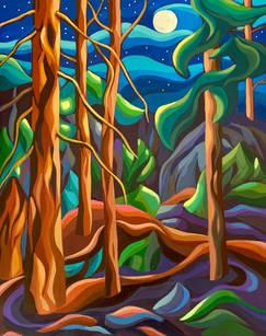 Moonlight Forest