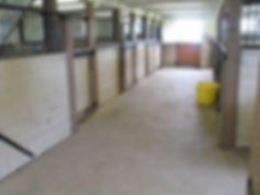 Indoor Barn, Boarding Barn, Boading Pickering, Belinda La Belle, LaBelle, Stable, Horseback Lessons Toronto, Ajax, Pickering, Oshawa