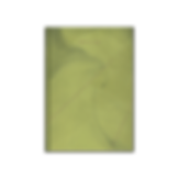 LIME_Studio-AVD-transparent.png