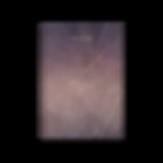 SUMMER_Studio-AVD-transparent.png