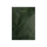 TROPIC_Studio-AVD-transparent.png