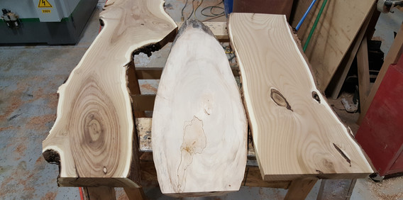Russian Olive and Cottonwood
