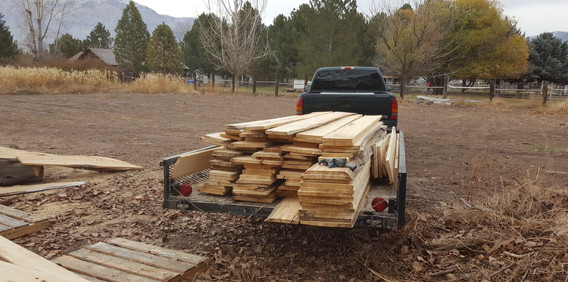 Cottonwood slabs on its way to be dried