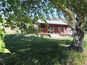 Sawdon-allanvilla-tree