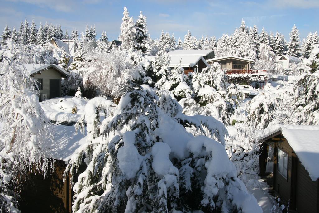 marie t snow