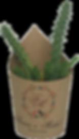 cactus_rótulo.png