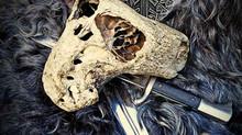 """В Адыгее нашли сундук """"Аненербе"""" с черепами неизвестных существ"""