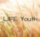 youth-link.png