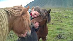 dyrlæge, hest, hestedyrlæge