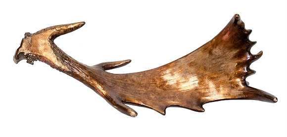 Cuerno Siberia Cobre