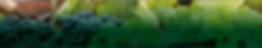 Skærmbillede 2020-01-16 kl. 11.32.06.png