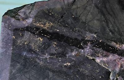 M Vein with intergrown chalcopyrite in SMD024