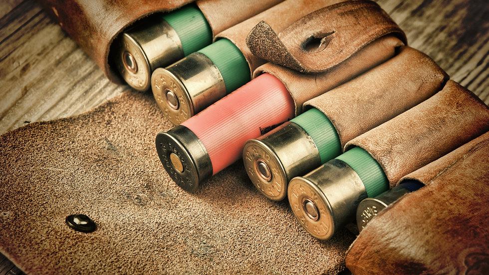 20 Gauge (12 Round) Ammunition and 6 Round Leather Case