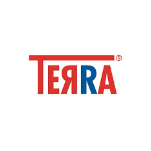 Terra Zitronen-Limonade 12 x 0,7 Liter (Glas)