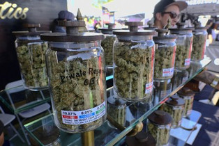 First day of legal recreational marijuana sale in California with crowds in long lines.