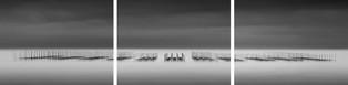 noriforms002 (tripych) 2012