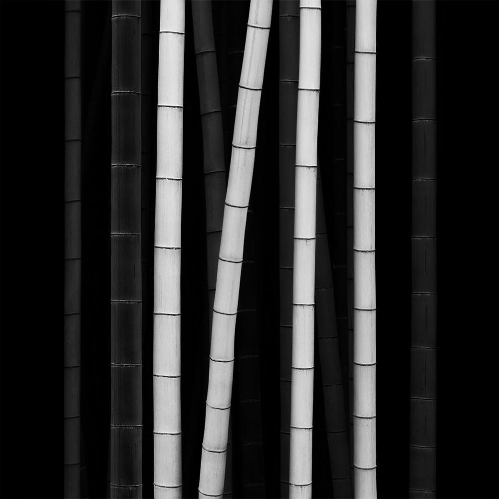 filament 2017