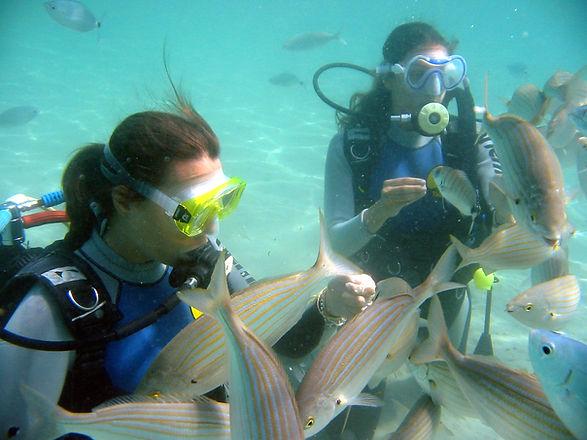 Giada feeding fish.jpg
