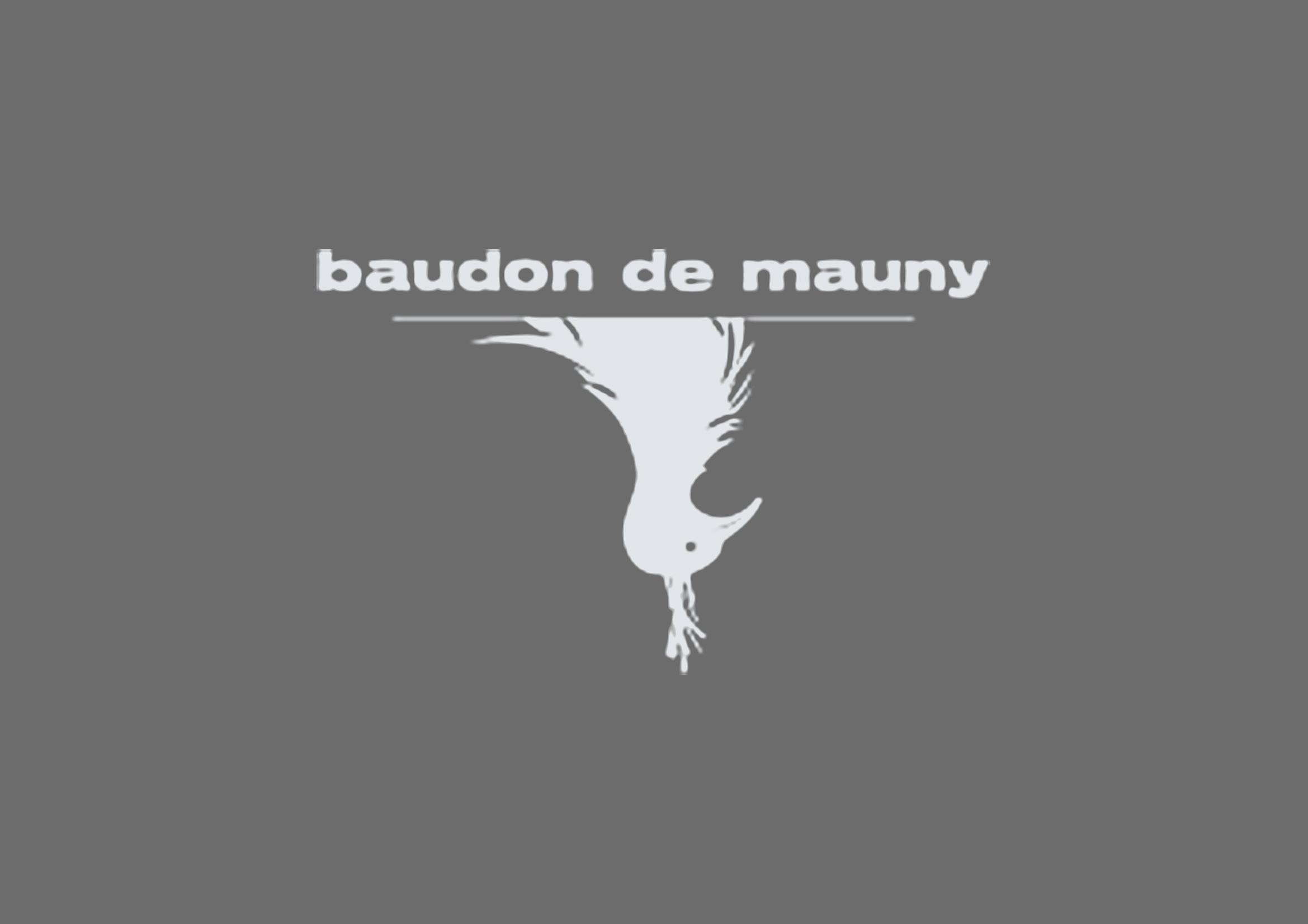 L'Hôtel Baudon de Mauny