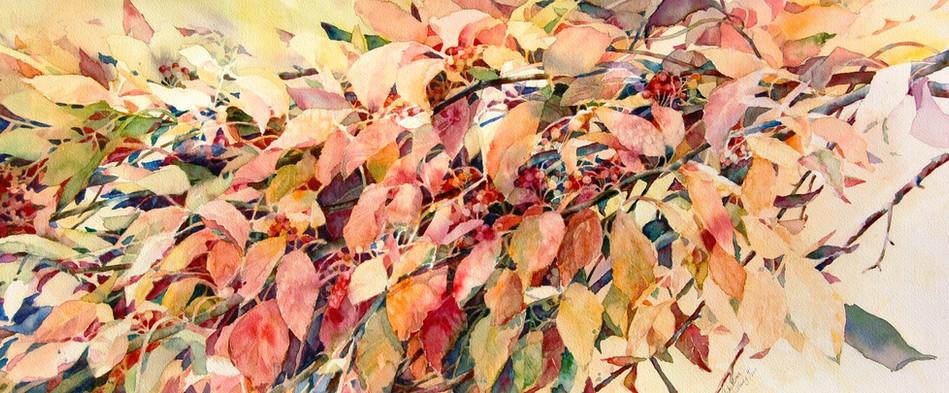 Fall Dogwood Leaves