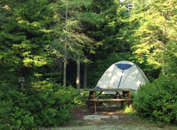 Secluded Campsites