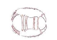 logo.jp 1