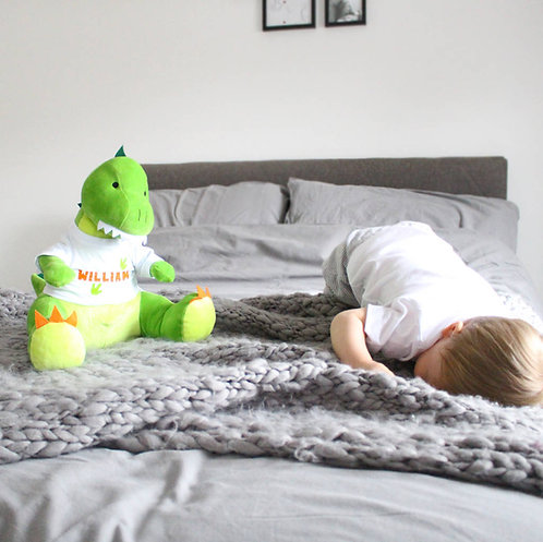 Dylan The Dinosaur Soft Toy