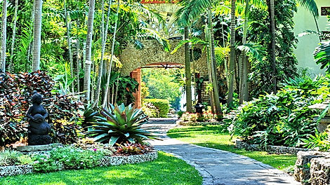 We'll spend the day exploring this relaxing oasis in Coral Gables for rare and endangered tropical plants! Includes: R/T transportation, plus a guided tram tour of the gardens & butterfly pavilion. Lunch on own at the fabulous Glasshouse Cafe.