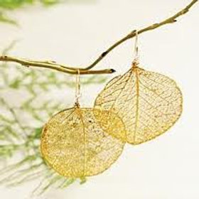 Photo of gold round leaf earrings hanging on branch