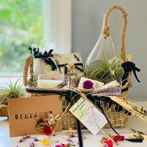 Photo of house warming basket with candle, terrarium, sachet, card and air plants by window