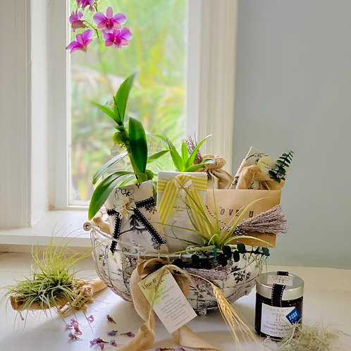 photo of plant, basket, chocolate dip, chocolate bar and biscotti in a basket by a window