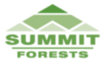SUMMIT-LOGO-COLOUR-HIRES (002).PNG