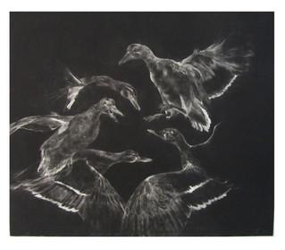 Five ducks (Kalevala serie)