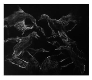 Seven ducks (Kalevala serie)