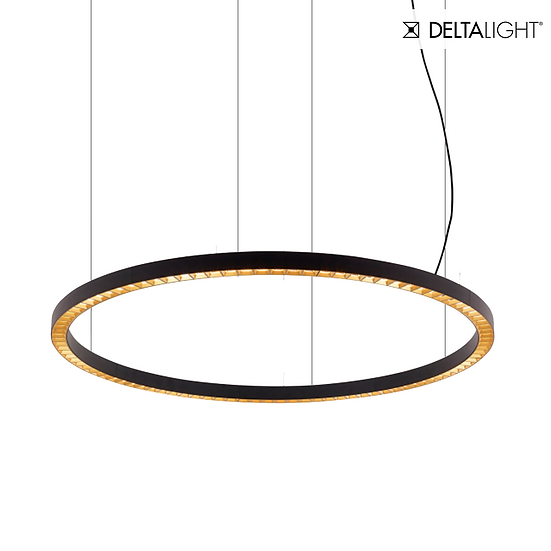 Deltalight Inform R1 down-up