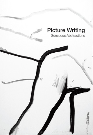 Picture Writings: Sensuous Abstraction
